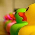 Rubber Ducks- by Panda Bear Photography